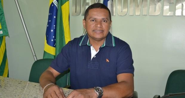 Alerta! Piauí continua em emergência fitossanitária para helicoverpa armigera