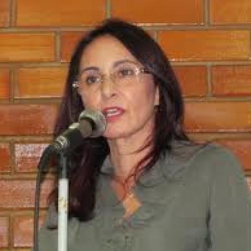 Liziê Coelho quer internet grátis nas escolas públicas