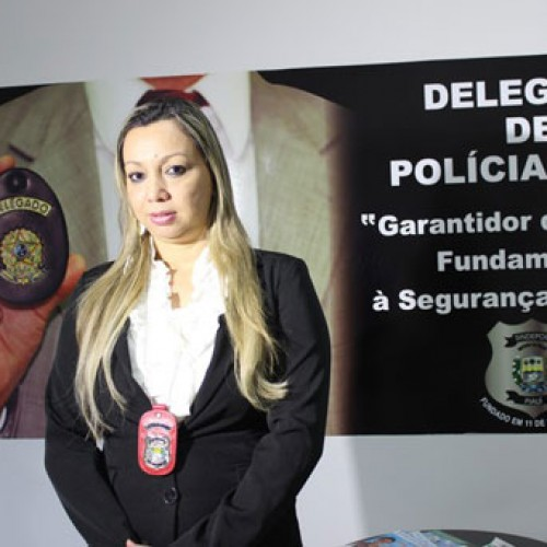 Piauí conta com 56 delegados para  atender todo o interior do Piauí