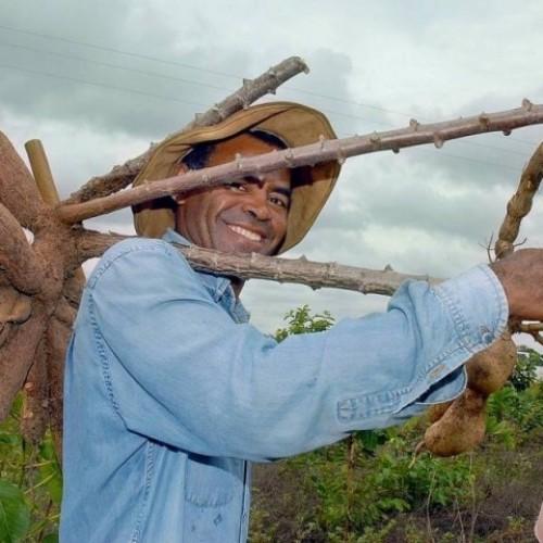 Agricultores do Piauí tem até 30 de junho para renegociar dívidas do Pronaf