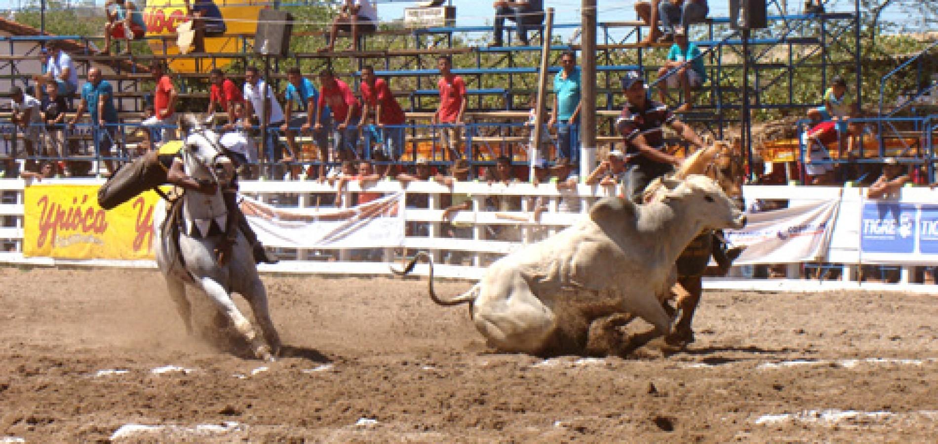 Vaquejada movimenta a cidade de Picos neste final de semana; veja as atrações