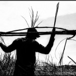 Piauienses são encontrados em situação degradante em obra no Estado de MG