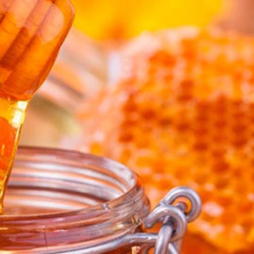 Apicultores de Simplício Mendes esperam colher 400 toneladas de mel