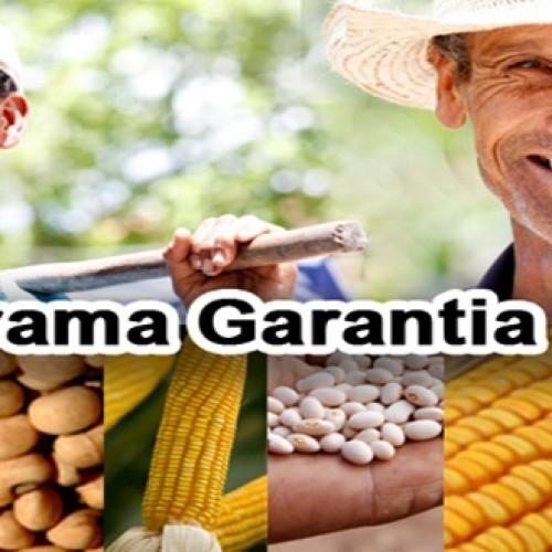 Prazo do pagamento do Garantia Safra é prorrogado até o dia 12