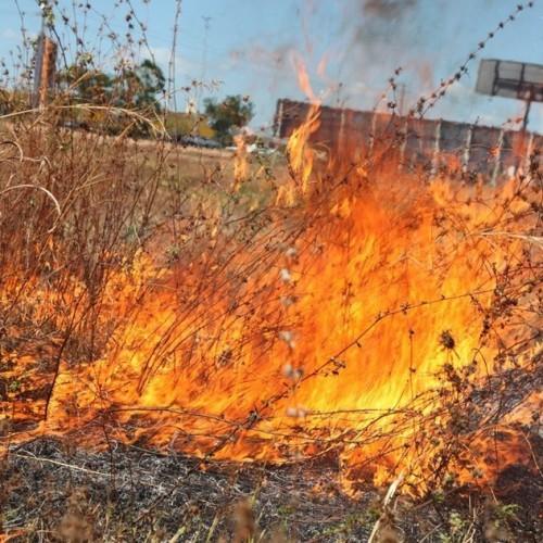 Piauí registra mais de 140 incêndios nos dois primeiros dias de setembro