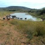 Nível de barragens cai, chega a 18%, e racionamento piora em municípios