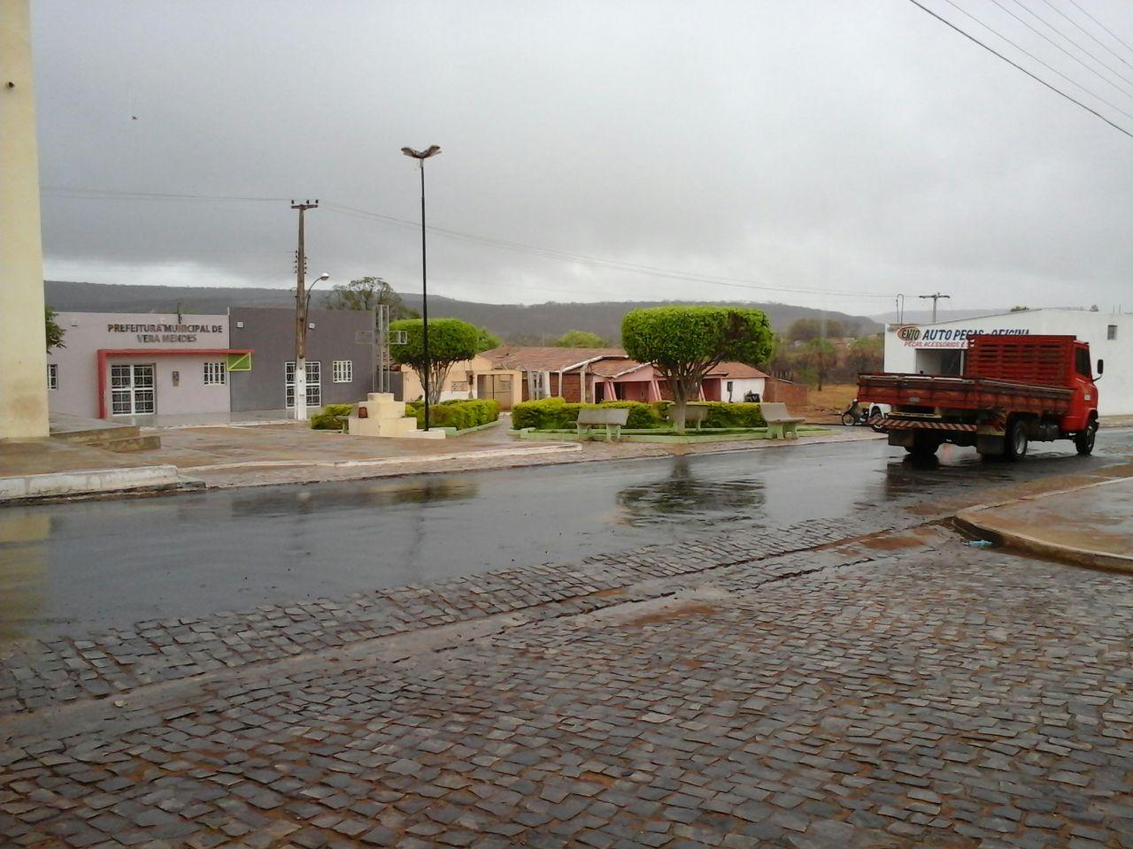 Vera Mendes - PI, por Gildevan Borges
