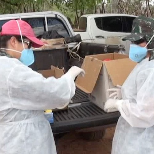 41 pessoas são monitoradas com suspeita de Febre do Nilo no Piauí