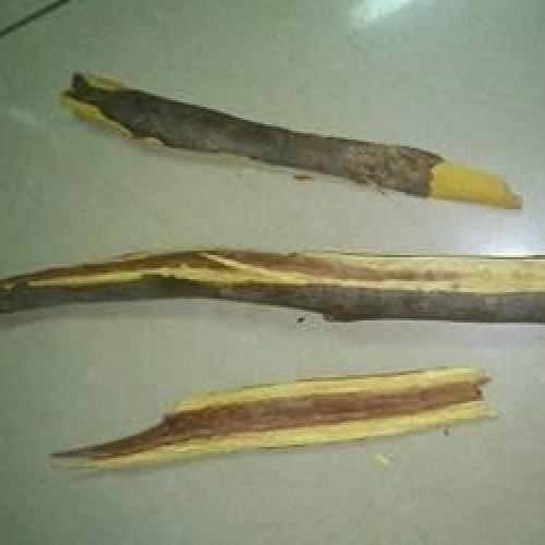 Pai mata filho a pauladas no sul do Piauí