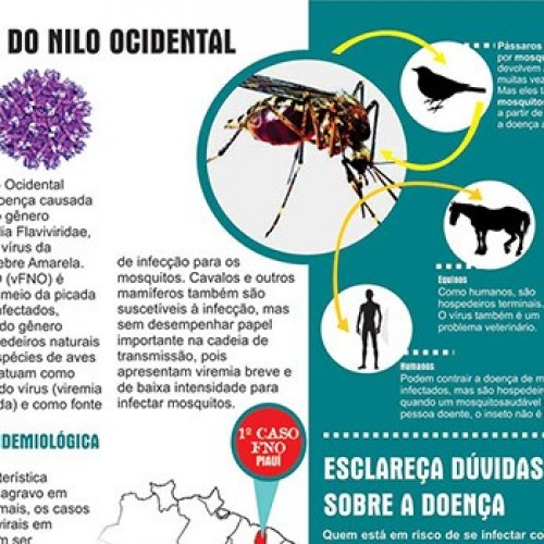 Sesapi divulga parecer sobre febre do Nilo; Jaicós e Vera Mendes em processo de investigação