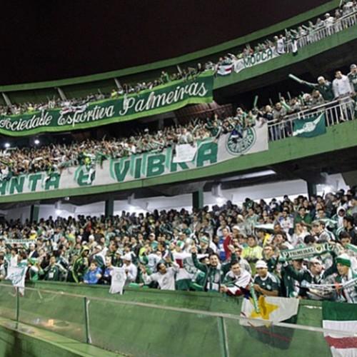 Palmeiras foi o campeão de sócios em 2014; Corinthians e Cruzeiro completam pódio
