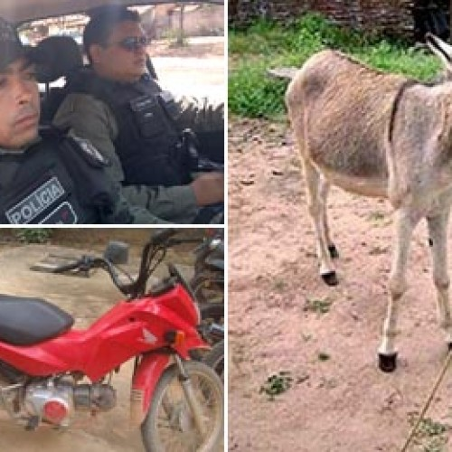 Suspeito furta moto e deixa jumento no lugar