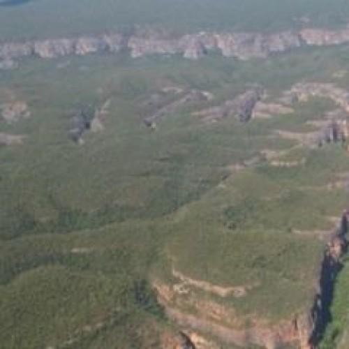 Municípios do Piauí estão entre os que mais conservaram a Mata Atlântica