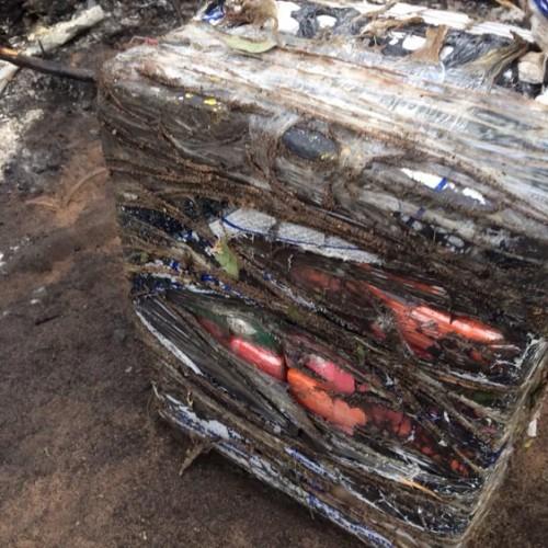 Cocaína encontrada após queda de avião no PI é avaliada em meio milhão e seria transportada em carro-pipa