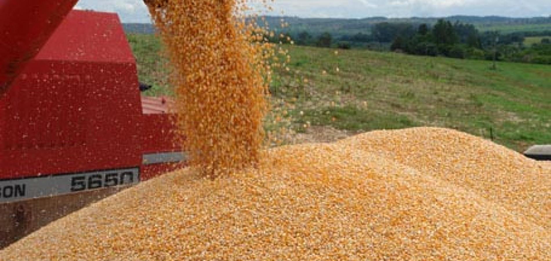Exportações no Piauí crescem 104,9% no 1º semestre de 2015