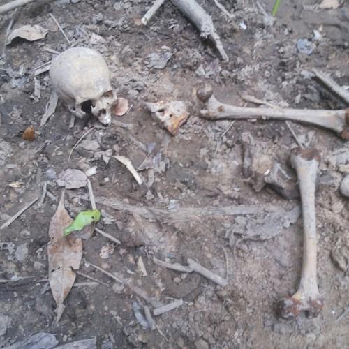 Em cem dias, três corpos são achados em cidade do Piauí e polícia crê em grupo de extermínio