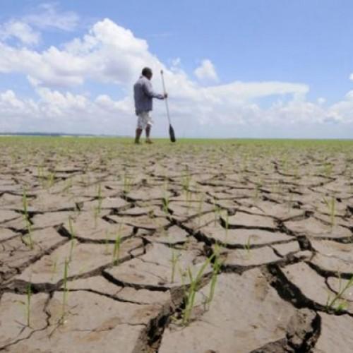 Inadimplência de prefeituras pode deixar agricultores sem o Garantia Safra no Piauí