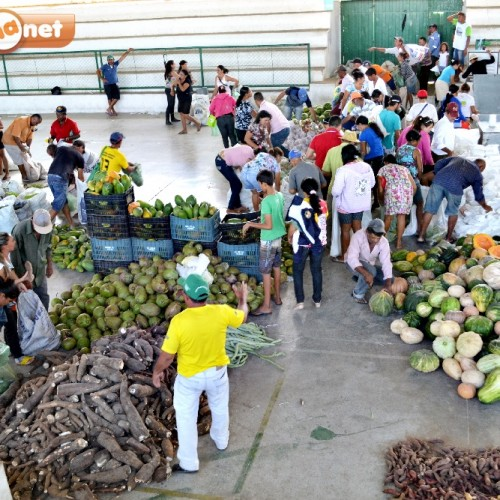 Prefeitura de Padre Marcos distribui 8 toneladas de alimentos para famílias carentes