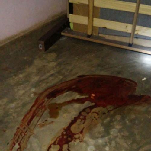 Vaqueiro flagra traição e mata esposa e suposto amante a tiros no interior do Piauí