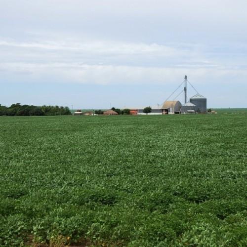 Produtores têm até 30 de novembro para pedido de regularização de terras