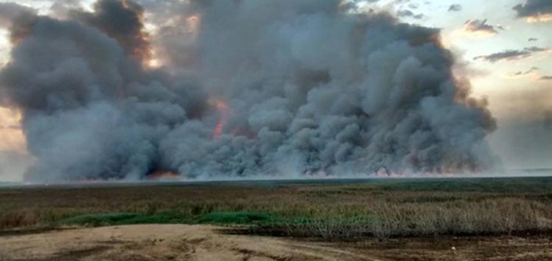 Sem água e com racionamento, Piauí vê 5ª maior lagoa do país virar cinzas