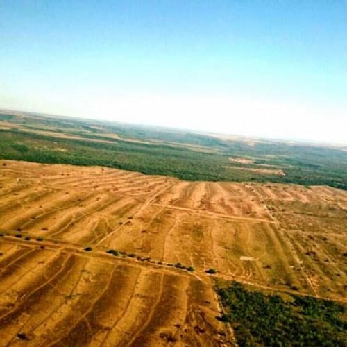 Sindicato denuncia assaltos milionários a fazendas no Sul do Piauí