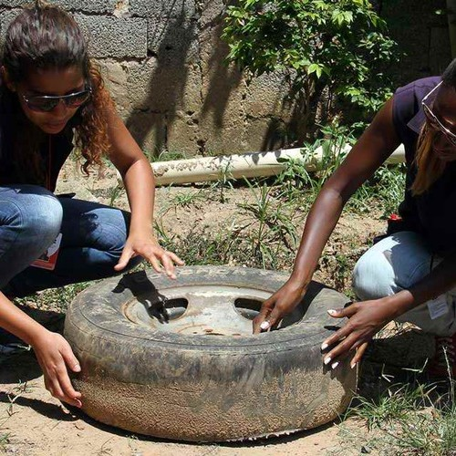 Piauí recebe reforço de mais de sete mil agentes comunitários para combate ao Aedes aegypti