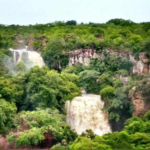 Chuvas mudam paisagem no Piauí; confira os registros