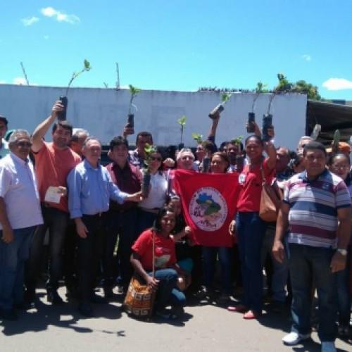 Governo entrega mudas e sementes a agricultores de Picos e Paulistana