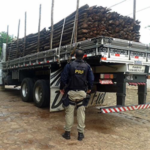 Veículo com carga ilegal de madeira é apreendido pela PRF