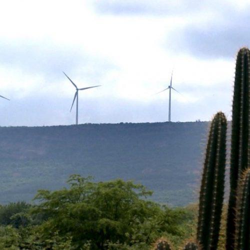 Produção de energia eólica abre série de reportagens 'Belezas do Piauí', mostra TV do Piauí