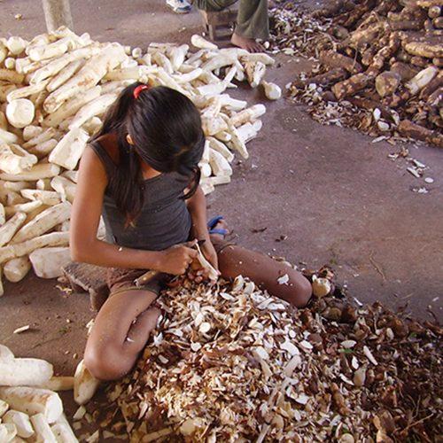 Piauí recebe 47 denúncias de trabalho infantil em apenas um ano