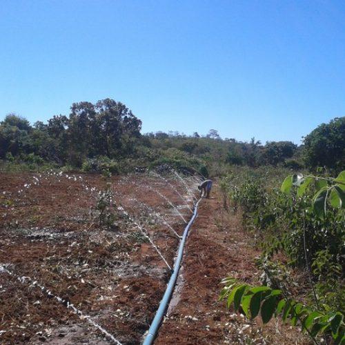 Piauiense cria projeto de captação de água subterrânea utilizando luz solar