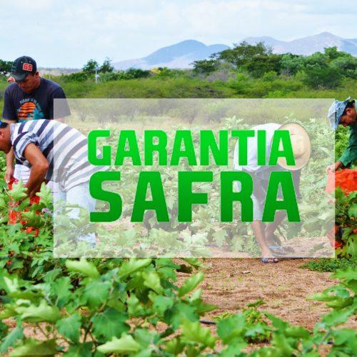 Quase 200 municípios do Piauí aderiram ao programa Garantia Safra