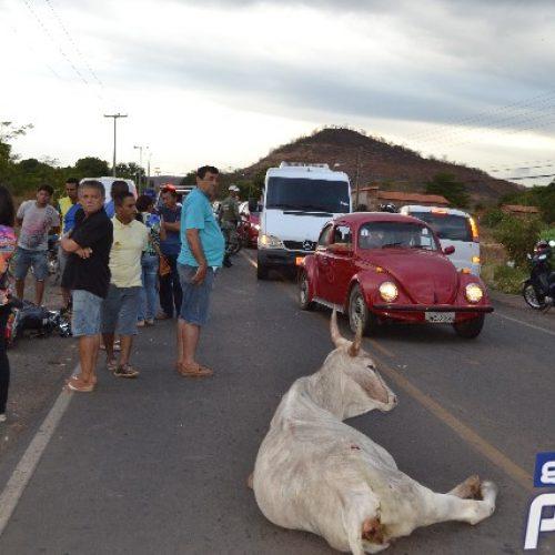 Motociclista morre após colidir com uma vaca próximo a Picos