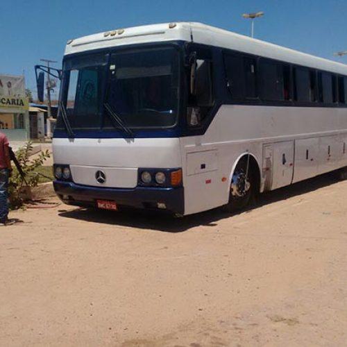 Operação no Sul do Estado tem presos por tráfico e ônibus clandestino