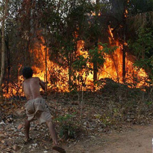 Piauí registra mais de 500 novos focos de incêndio em apenas 48 horas