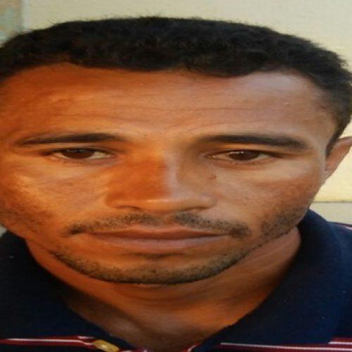 Homem é preso por roubar colmeias em Marcolândia e vender em Jaicós