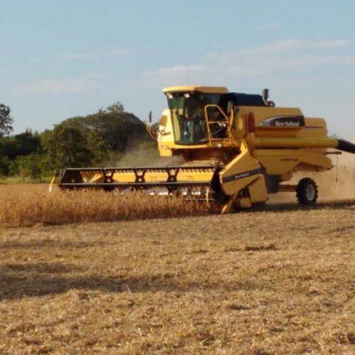 Quadrilha chega de Scania, faz vigia de refém e leva R$ 1 milhão de fazenda no Piauí