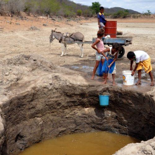 Municípios nordestinos passam pela pior seca dos últimos cem anos