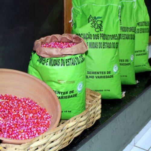 Estado intensifica entrega de sementes e mudas nesta semana