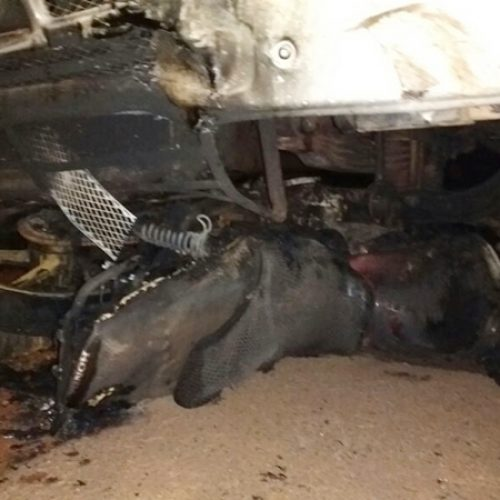 Após colisão, moto pega fogo e homem morre em Picos