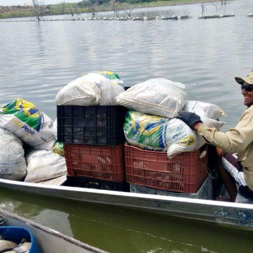 Superlotação de tanques pode ter matado 17 toneladas de peixes na barragem do Estreito