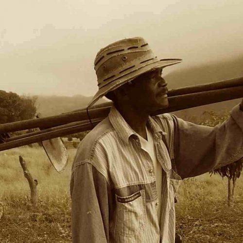 Contribuição dos trabalhadores rurais com o INSS pode ser quadruplicada