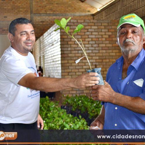 Prefeitura de Jaicós distribui mais 10 mil mudas de caju para agricultores