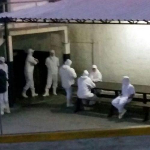 Polícia Federal deflagra operação de combate a venda ilegal de carnes