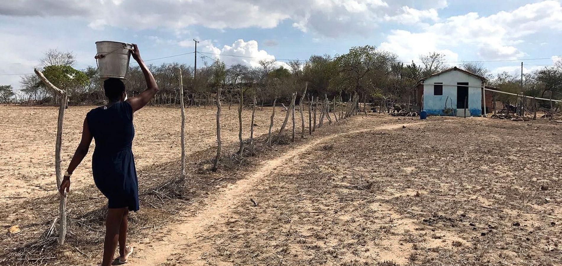 Nordeste em emergência: histórias de uma seca sem fim