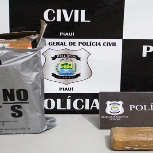 PICOS | Polícia Civil apreende cocaína avaliada em R$ 45 mil dentro de ônibus clandestino