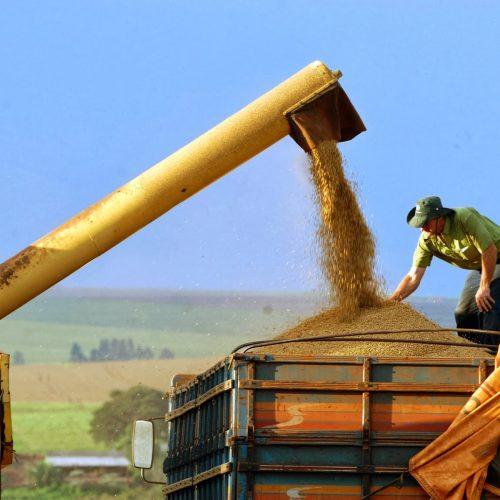 Piauí deve ter nova marca histórica na produção de grãosem 2021, com 5,4 milhões de toneladas