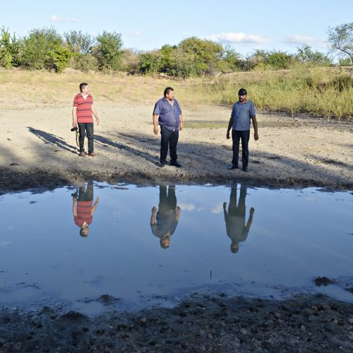 Seca castiga animais e preocupa o homem do campo em Belém do Piauí. Veja!